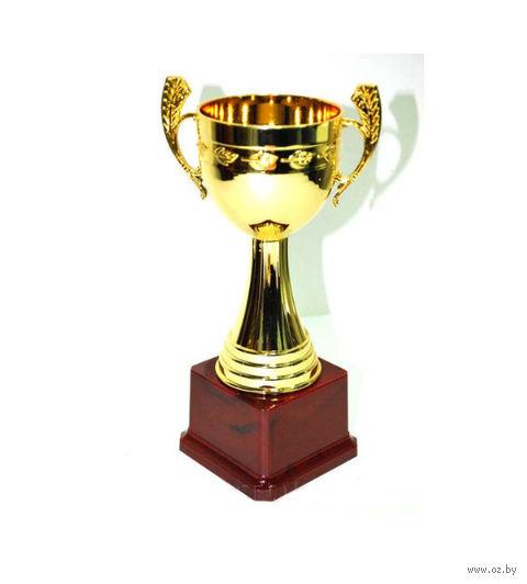 Кубок сувенирный (арт. HB2074-B) — фото, картинка