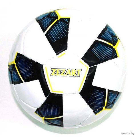 Мяч футбольный (арт. 0059) — фото, картинка