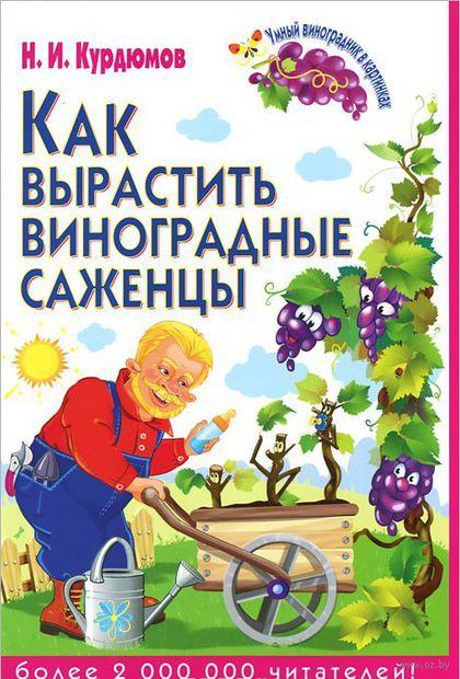 Как вырастить виноградные саженцы — фото, картинка