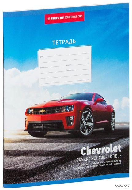 """Тетрадь в клетку """"Supercars"""" (12 листов; в ассортименте) — фото, картинка"""