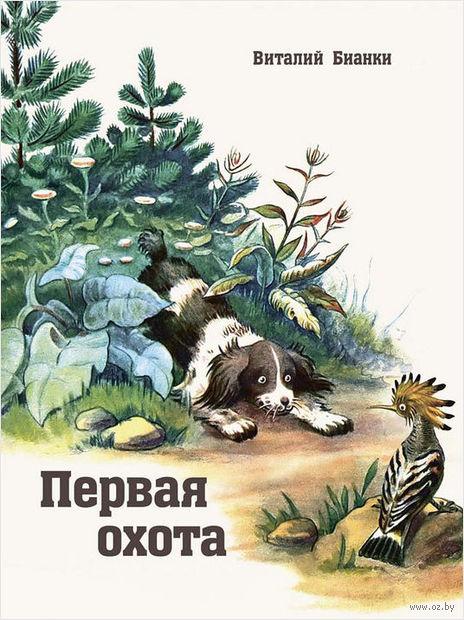 Первая охота. Виталий Бианки