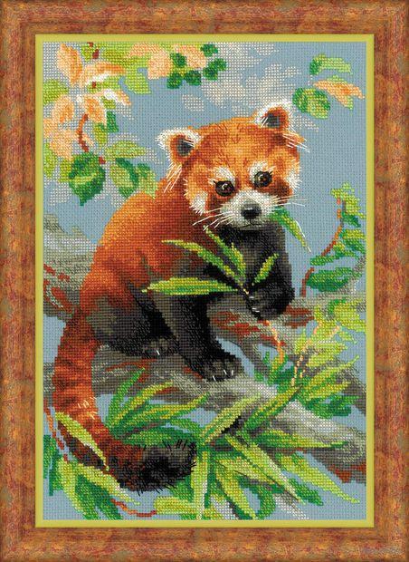"Вышивка крестом ""Красная панда"" (210х300 мм) — фото, картинка"