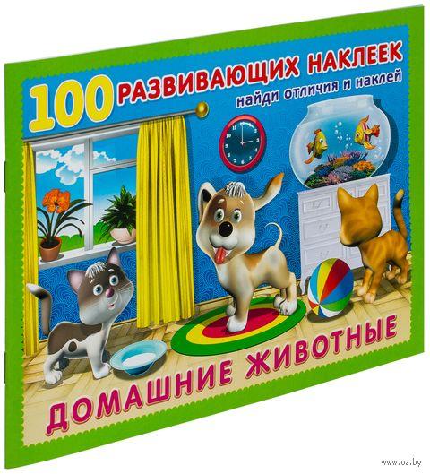 Домашние животные. Книжка с наклейками — фото, картинка