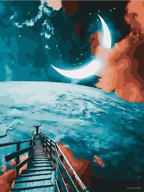 "Картина по номерам ""Лунный путь"" (400х500 мм) — фото, картинка"