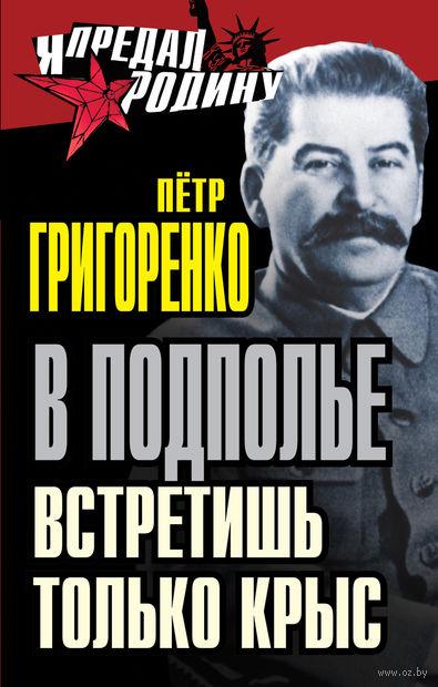 В подполье встретишь только крыс. Петр Григоренко