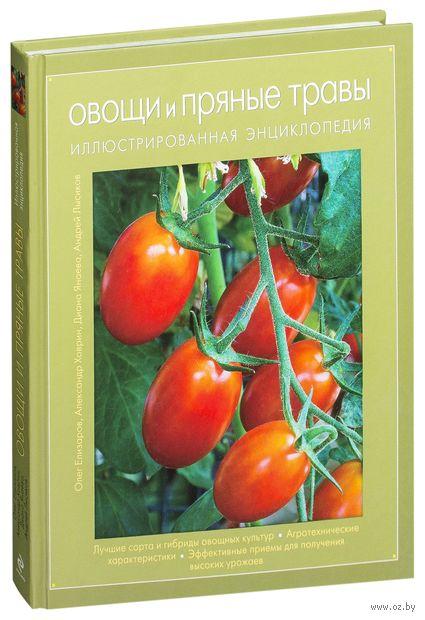 Овощи и пряные травы. Олег Елизаров, Александр Ховрин, Диана Янаева