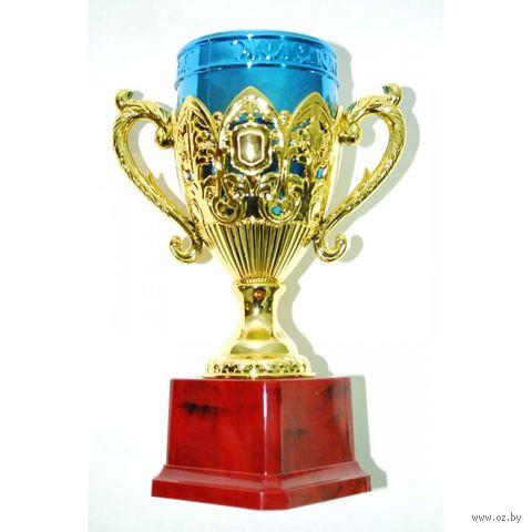 Кубок сувенирный (арт. HB9034) — фото, картинка