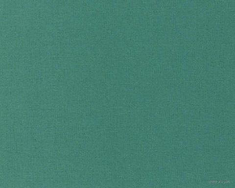 Паспарту (10x15 см; арт. ПУ2767) — фото, картинка