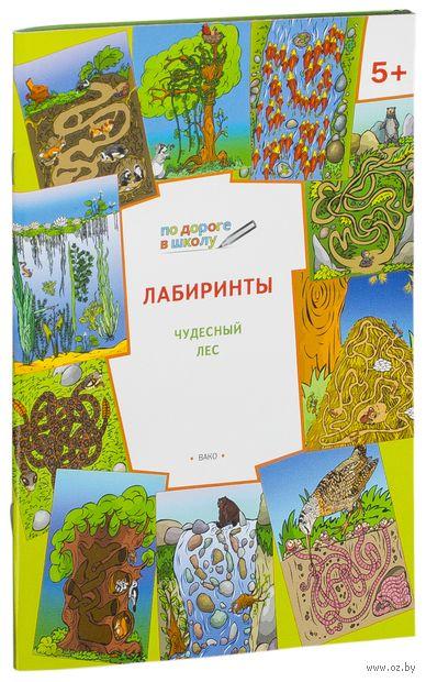 Лабиринты. Чудесный лес. Вениамин Медов