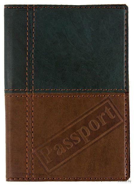 Обложка на паспорт (арт. C4t-111-80) — фото, картинка