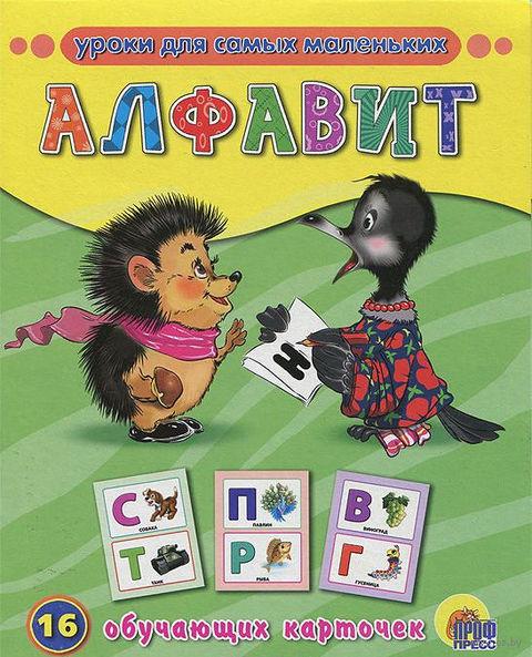 Алфавит.16 обучающих карточек