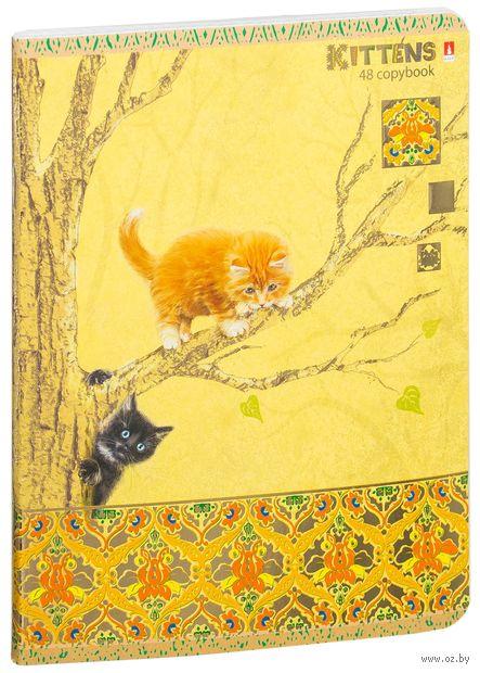 """Тетрадь полуобщая в клетку """"Кошки-мышки"""" (48 листов; в ассортименте) — фото, картинка"""