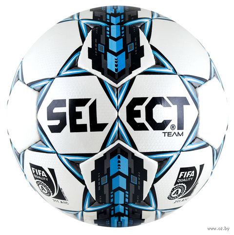 Мяч футбольный Select Team №5 — фото, картинка