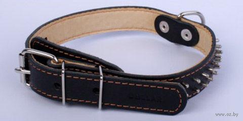 Ошейник двойной из натуральной кожи с шипами в два ряда (38-50 см; черный) — фото, картинка