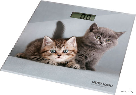Напольные весы Redmond RS-735 — фото, картинка