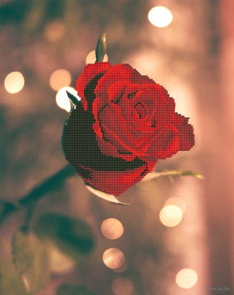 "Алмазная вышивка-мозаика ""Роза для нее"" (500х400 мм) — фото, картинка"