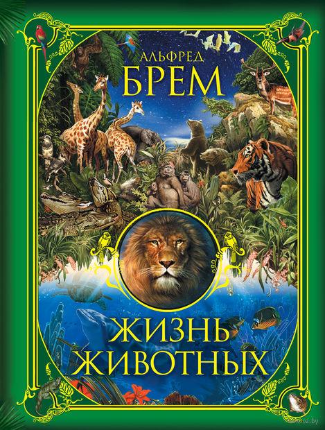 Жизнь животных. Альфред Брем