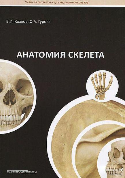 Анатомия скелета. Валентин Козлов, Ольга Гурова