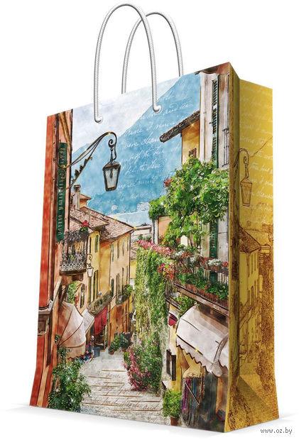 """Пакет бумажный подарочный """"Итальянский дворик"""" (26х32,4х12,7 см; арт. 44226) — фото, картинка"""