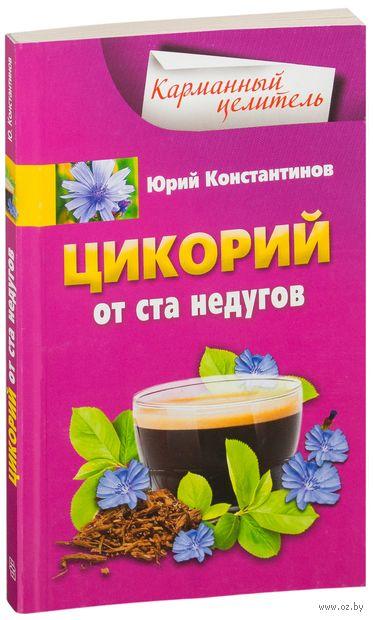 Цикорий от ста недугов. Юрий Константинов