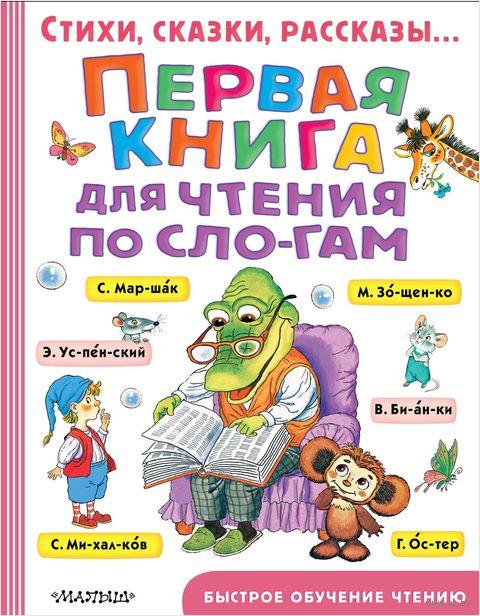 Первая книга для чтения по слогам — фото, картинка