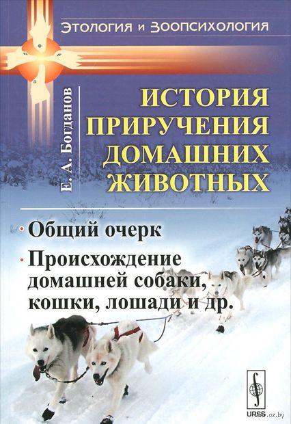 История приручения домашних животных. Общий очерк. Происхождение домашней собаки, кошки, лошади (м) — фото, картинка