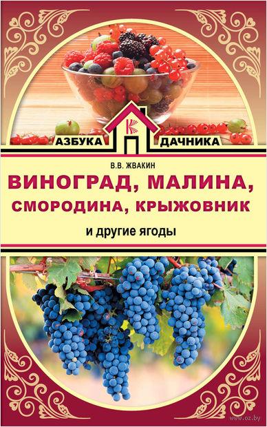 Виноград, малина, смородина, крыжовник и другие ягоды — фото, картинка