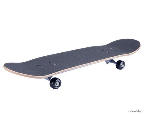 """Скейтборд """"Exposure"""" — фото, картинка"""