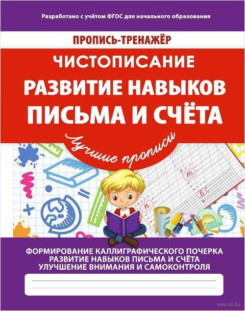 Чистописание. Развитие навыков письма и счёта — фото, картинка