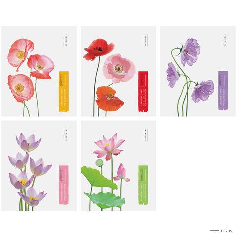 """Тетрадь в клетку 48 листов """"Цветы. Flowering Plants"""""""