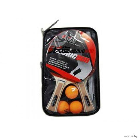 Набор для настольного тенниса (2 ракетки+3 мяча; арт. BB19) — фото, картинка