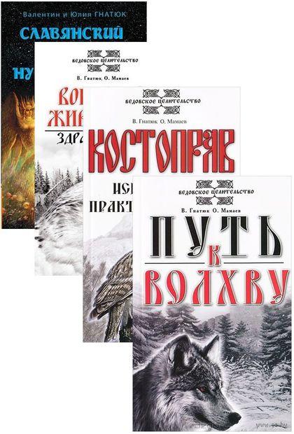 О волхвах и ведах. Комплект из 4 книг — фото, картинка