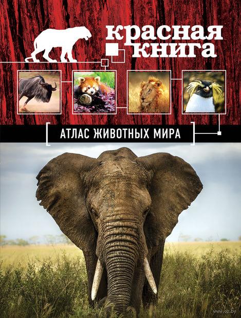 Атлас животных мира. Оксана Скалдина