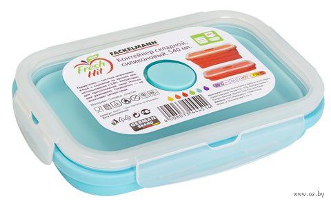 Контейнер для еды складной (0,54 л) — фото, картинка