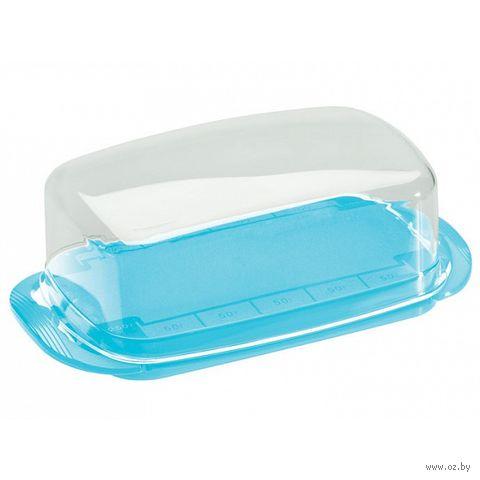 Масленка пластмассовая (180x95x65 мм) — фото, картинка
