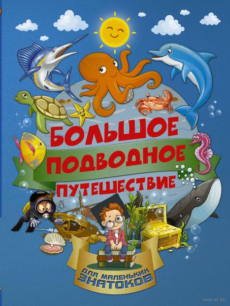 Большое подводное путешествие — фото, картинка