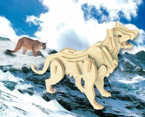 """Сборная деревянная модель """"Горный лев"""" — фото, картинка"""
