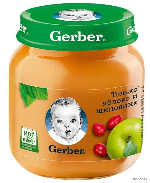 """Пюре детское """"Gerber. Яблоко с шиповником"""" (130 г) — фото, картинка"""