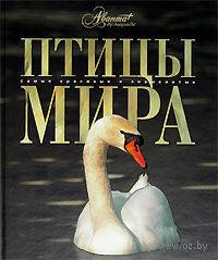 Птицы мира. К. Михайлов