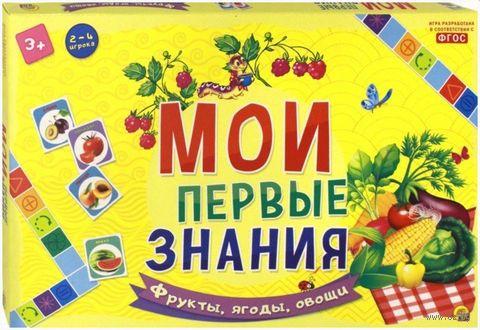 Мои первые знания. Фрукты, ягоды, овощи — фото, картинка