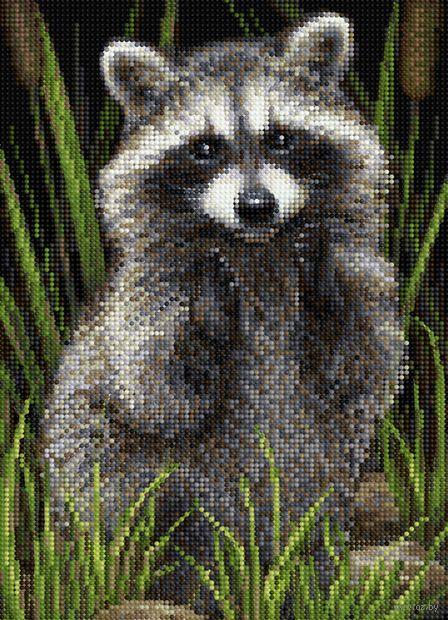 "Алмазная вышивка-мозаика ""Енот"" (360х260 мм) — фото, картинка"