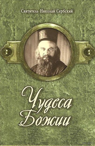 Чудеса Божии. Святитель Николай Сербский