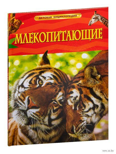 Млекопитающие — фото, картинка