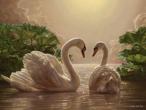 """Картина по номерам """"Лебеди"""" (400x500 мм; арт. MG301)"""