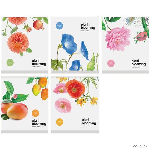 """Тетрадь в клетку 48 листов """"Цветы. Plant Blooming"""""""