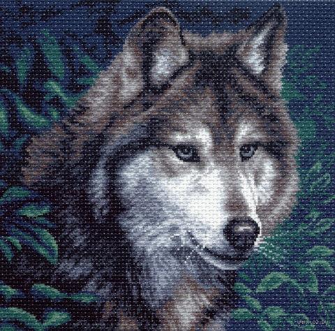 """Канва с нанесенным рисунком """"Волк"""" (арт. 970) — фото, картинка"""
