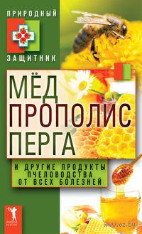 Мед, прополис, перга и другие продукты пчеловодства от всех болезней — фото, картинка