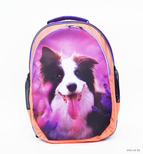 """Рюкзак """"Собака"""" — фото, картинка"""