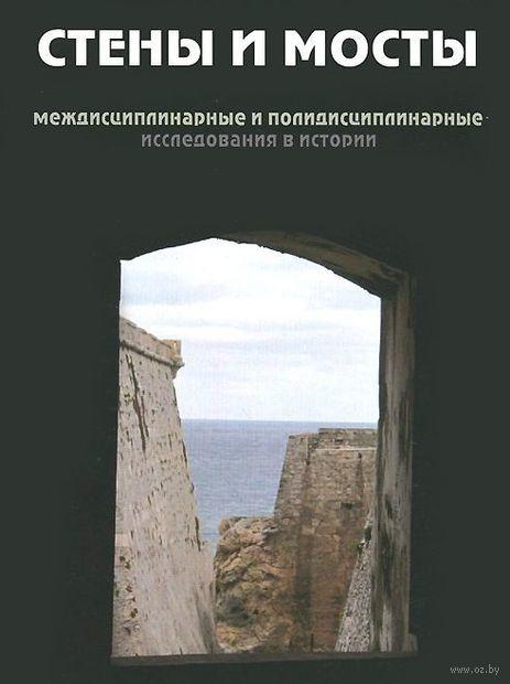Стены и мосты. Междисциплинарные и полидисциплинарные исследования в истории — фото, картинка