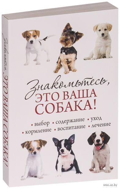 Знакомьтесь, это ваша собака!